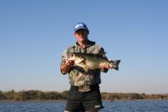 richard partridge bassie 004